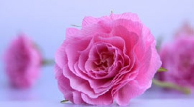 Роза из гофрированной бумаги (фото урок)