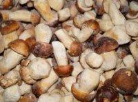 Замороженные грибы: как выбирать в магазине и применять?
